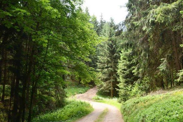 Assinghausen surroundings