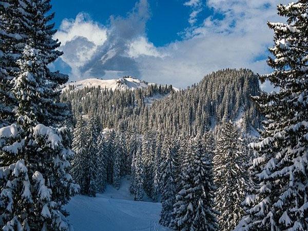snow landscape, ambience image