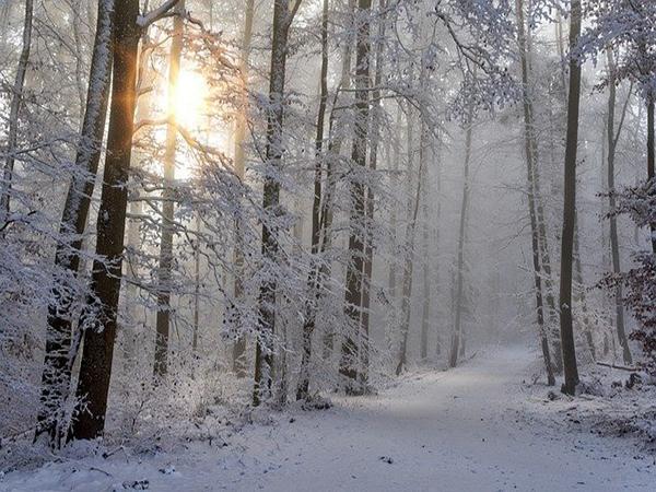 Schneelandschaft, Atmosphäre Bild